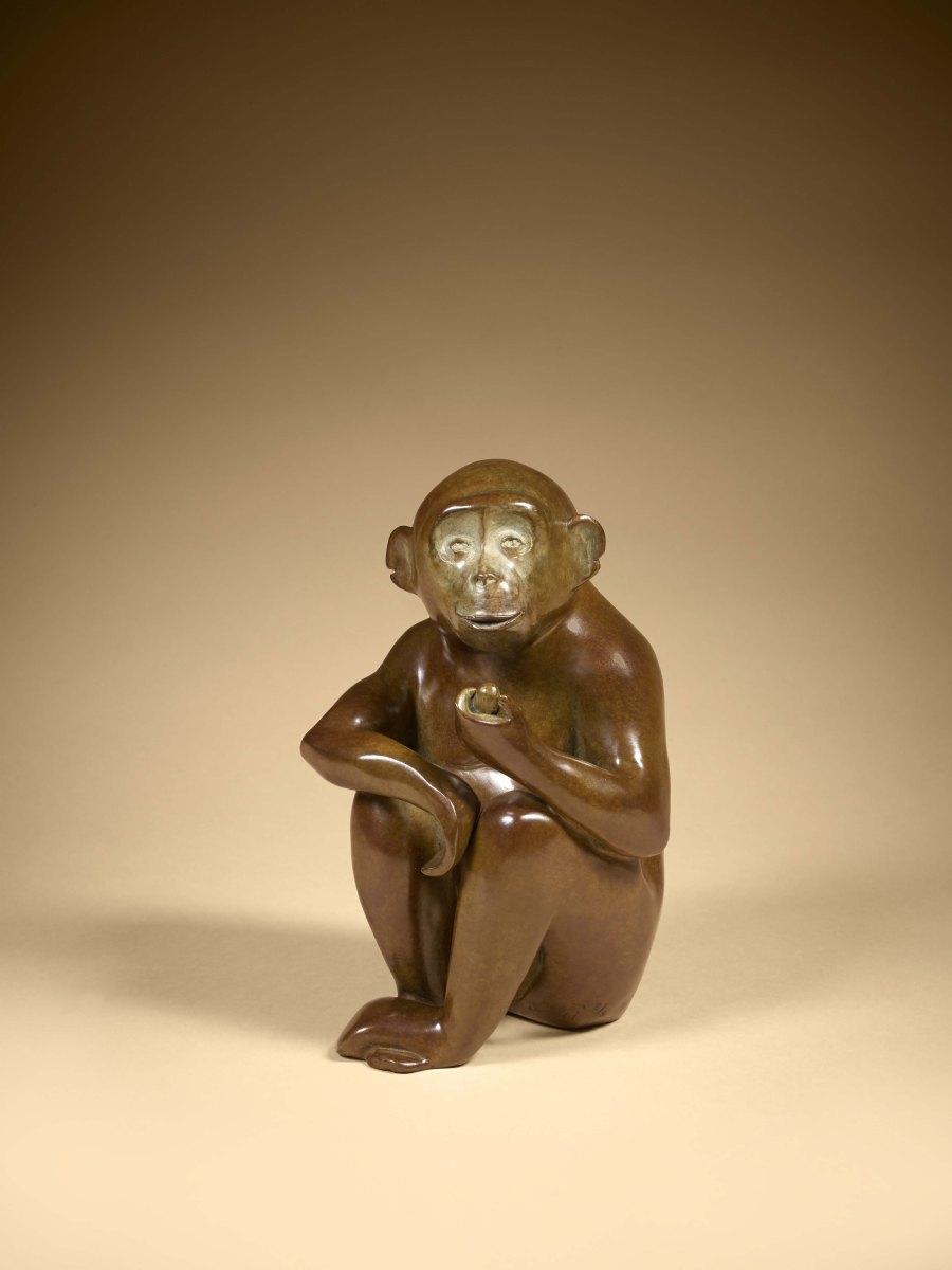 Singe, Chimpanzé